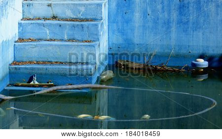 Abandoned concrete swimming pool. Careless light-blue swimming pool. Swimming pool with standing water inside and rotten objects