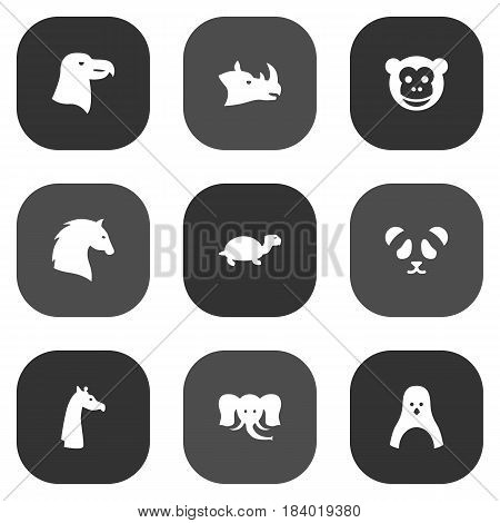 Set Of 9 Brute Icons Set.Collection Of Ape, Aquila, Trunked Animal And Other Elements.