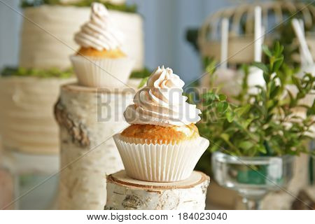Tasty cupcake in candy bar with forest style decorations