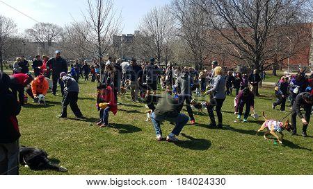 Horner Park, Dog Easter Egg Hunt, Chicago, March 26th, 2016