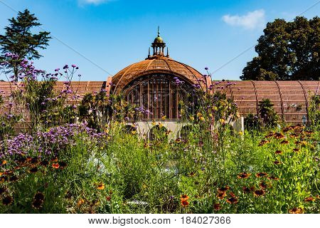 SAN DIEGO, CALIFORNIA - APRIL 28, 2017:  A spring flower display outside the landmark Botanical Building in Balboa park, built for the 1915-1915 exposition, and housing more than 2000 plants.