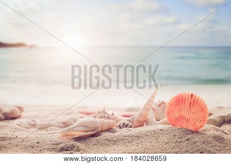 Concept of summertime on tropical beach. Seaside summer beach with starfish shells coral on sandbar and blur sea background. vintage color tone.