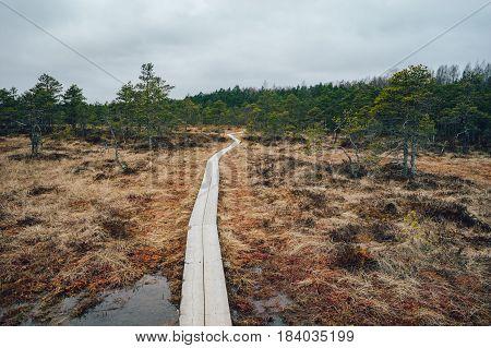 Hiking trail through Kakerdaja fen Jarva county Estonia
