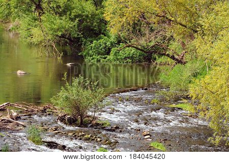 Bushes trees and cascade of the Yantra river in Vetrintsi village in Bulgaria