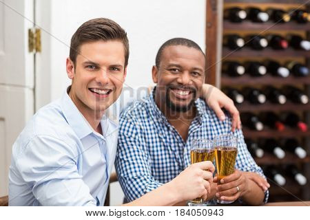 Portrait of friends toasting beer glasses