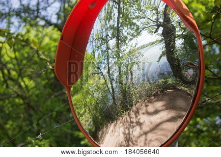 Round convex mirror with orange frame in woods