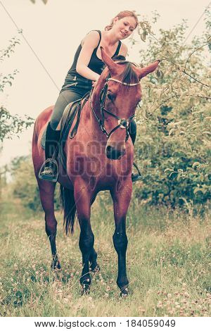 Animal horsemanship concept. Young woman sitting on horse and leaning out of it