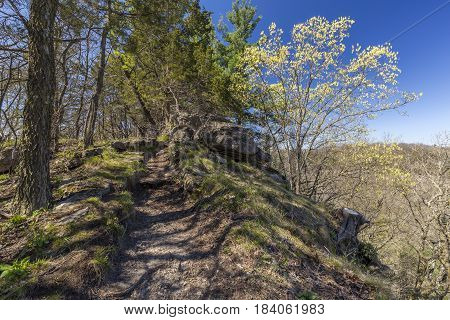 A hiking trail on a hill in spring.