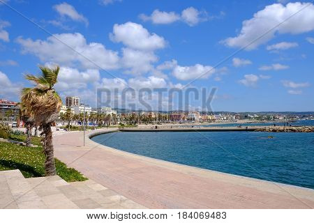 View of the embankment of Civitavecchia with green palm trees blue sky old typical roman houses and promenade along the coast in Lazio Italy.