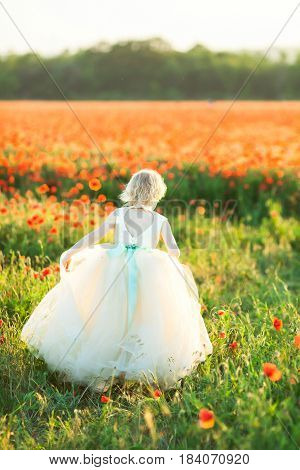 girl model, wedding, fashion and summer concept - back of little girl in festive white dress with a pale blue belt, bowknot and large cutout, she is walking over the huge poppy field