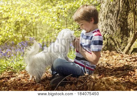 Little boy playing with his maltese puppy dog in the forest