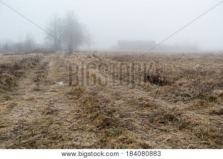 Abandoned farmhouse and the road in the morning mist.