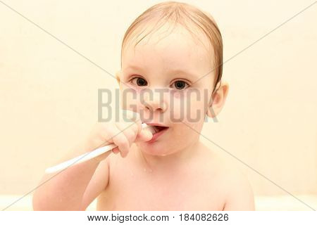 cute little boy cleans his teeth in a bath , and plays with a toothbrush, the concept of hygiene and cleanliness, closeup