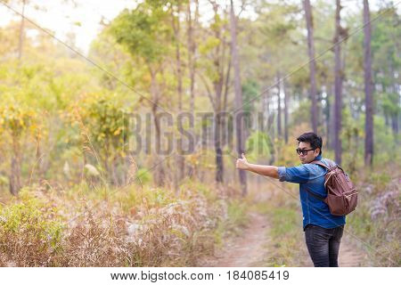 A man hitchhiking in the pine forest park, Thailand.