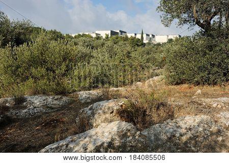 Park In Jerusalem