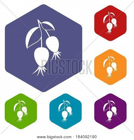 Dogrose berries branch icons set hexagon isolated vector illustration