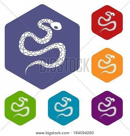 Python snake icons set hexagon isolated vector illustration