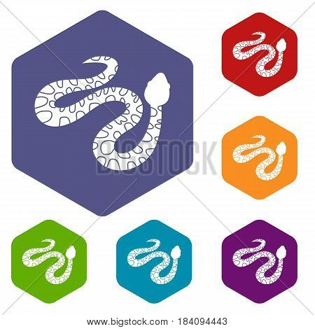 Spotted snake icons set hexagon isolated vector illustration