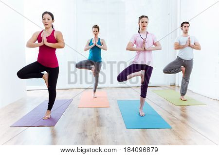 Portrait of group of people practicing yoga at home. Vrksasana pose.