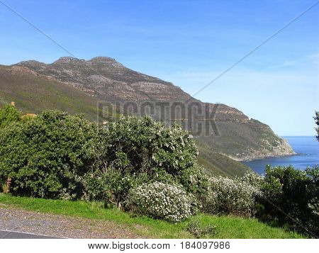 CAPE PENINSULA, CAPE TOWN SOUTH AFRICA, PART OF THE TABLE MOUNTAIN NATIONAL PARK