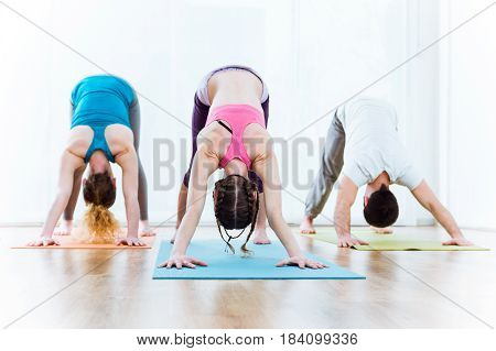 Portrait of group of people practicing yoga at home. Adho Mukha Svanasana pose.