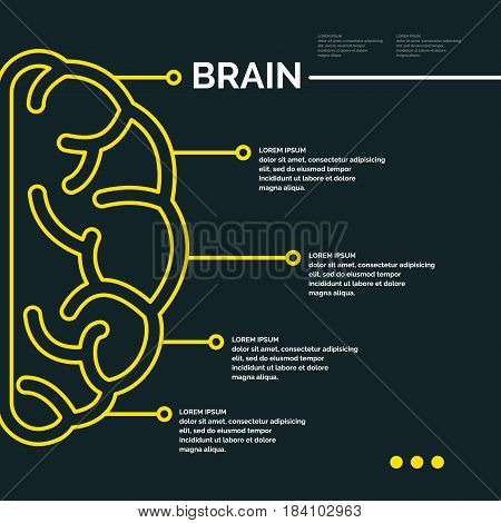 Vector illustration in a linear fashion with the image of the brain. Ideal for presentations, business infographic, education