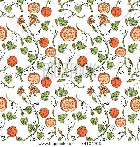 Pumpkin. Vector seamless pattern with pumpkins and stylized branches. Decorative background for design and decoration of textiles wallpapers packaging kitchen tools covers and other surfaces