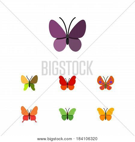 Flat Moth Set Of Moth, Milkweed, Monarch And Other Vector Objects. Also Includes Insect, Milkweed, Monarch Elements.