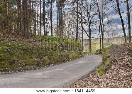 asphalt way leading to village Karba in Machuv kraj during sping in czech landscape