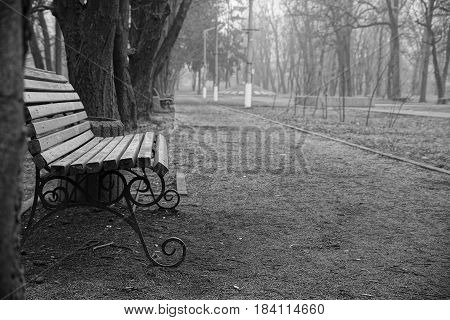 grey wooden bench is in an autumn park