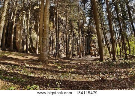 mysterious rock formation in Peklo valley in spring Machuv kraj region in Czech republic