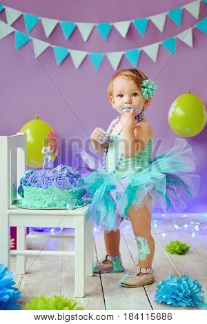 One Year Old Birthday Portraits with smash cake