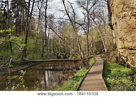 wooden path at spring Peklo valley with Robecsky potok creek and big rock in Machuv kraj tourist area