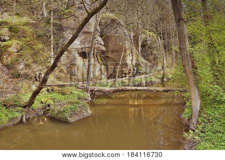 Robersky potok creek in spring Peklo valley of czech tourist area Machuv kraj
