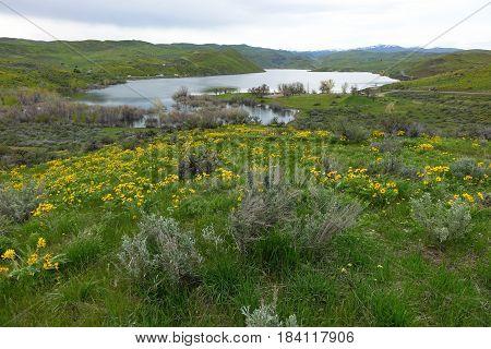 Spring Day at Mann Creek Reservoir, Idaho