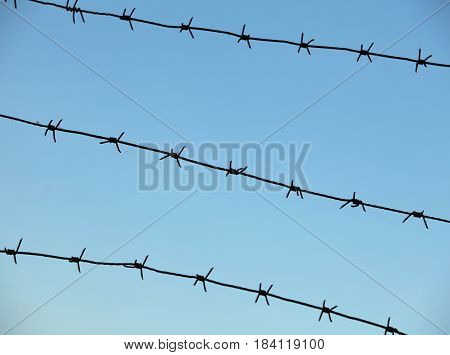 sky is enclosed by sharp barbed wire fence