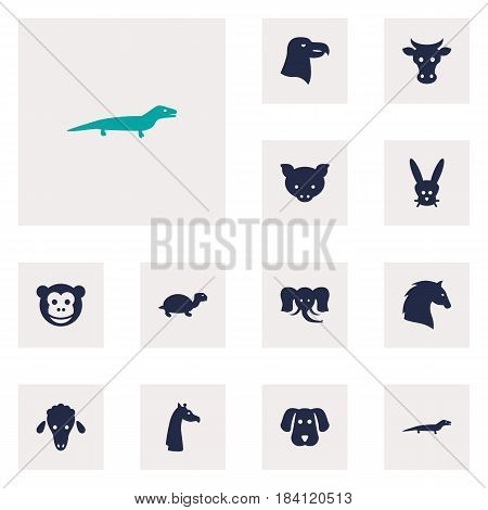 Set Of 12 Brute Icons Set.Collection Of Kine, Trunked Animal, Hound And Other Elements.
