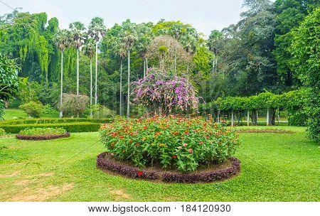 The Ornamental Garden In Sri Lanka