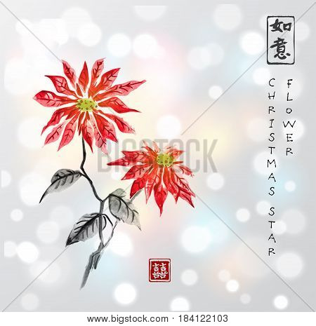 Poinsettia hand drawn with ink. Christmas star flower. Traditional oriental ink painting sumi-e, u-sin, go-hua.