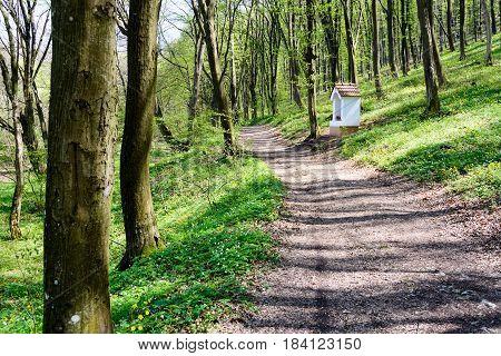 White small chapel in forest. Slovak Karst near Krasnohorska Dlha Luka Slovakia