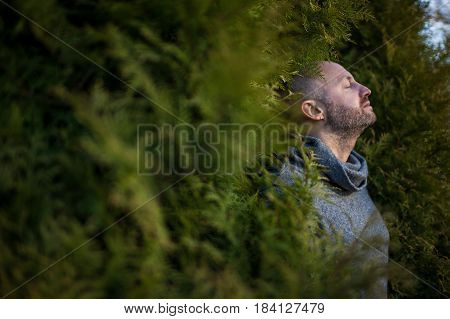 A Bald Man In A Warm Sweater Is Resting, Leaning Against The Trees. Breathe Fresh Air In Nature.