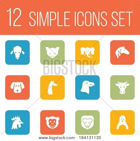 Set Of 12 Brute Icons Set.Collection Of Hound, Ape, Rooster And Other Elements.