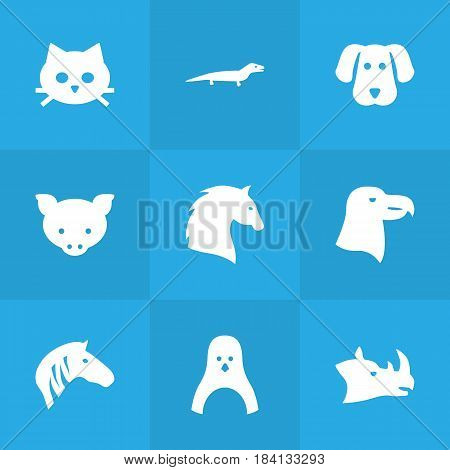 Set Of 9 Beast Icons Set.Collection Of Steed, Rhinoceros, Horse And Other Elements.