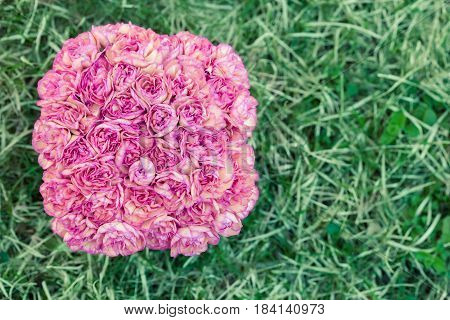 Tightly packed carnations arranged in a square vase shot from above.