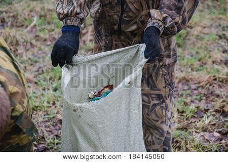 Cleaning Of Garbage In The Wood. People Scavenge In The Wood.
