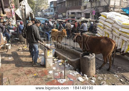 DELHI INDIA - DEC 20 : unidentified india people and life in rush hour at spice market. this market is famous and large spice market in delhi on december 20 2014 india