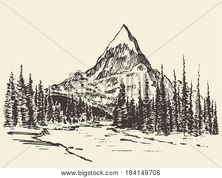 Sketch of a mountains with pine forest and river, engraving style, hand drawn vector illustration