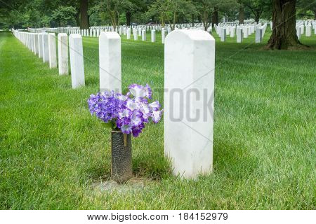 Gravestones in Arlington National Cemetery - Washington DC United States