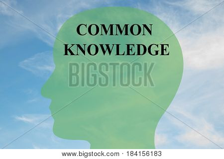 Common Knowledge - Mental Concept