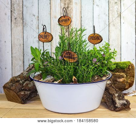 Many Herbs In An Old Wash Bowl.